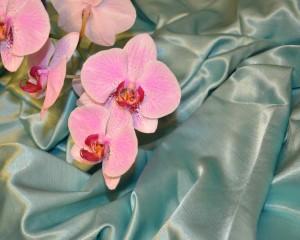 Majestic Tablecloth Fabric