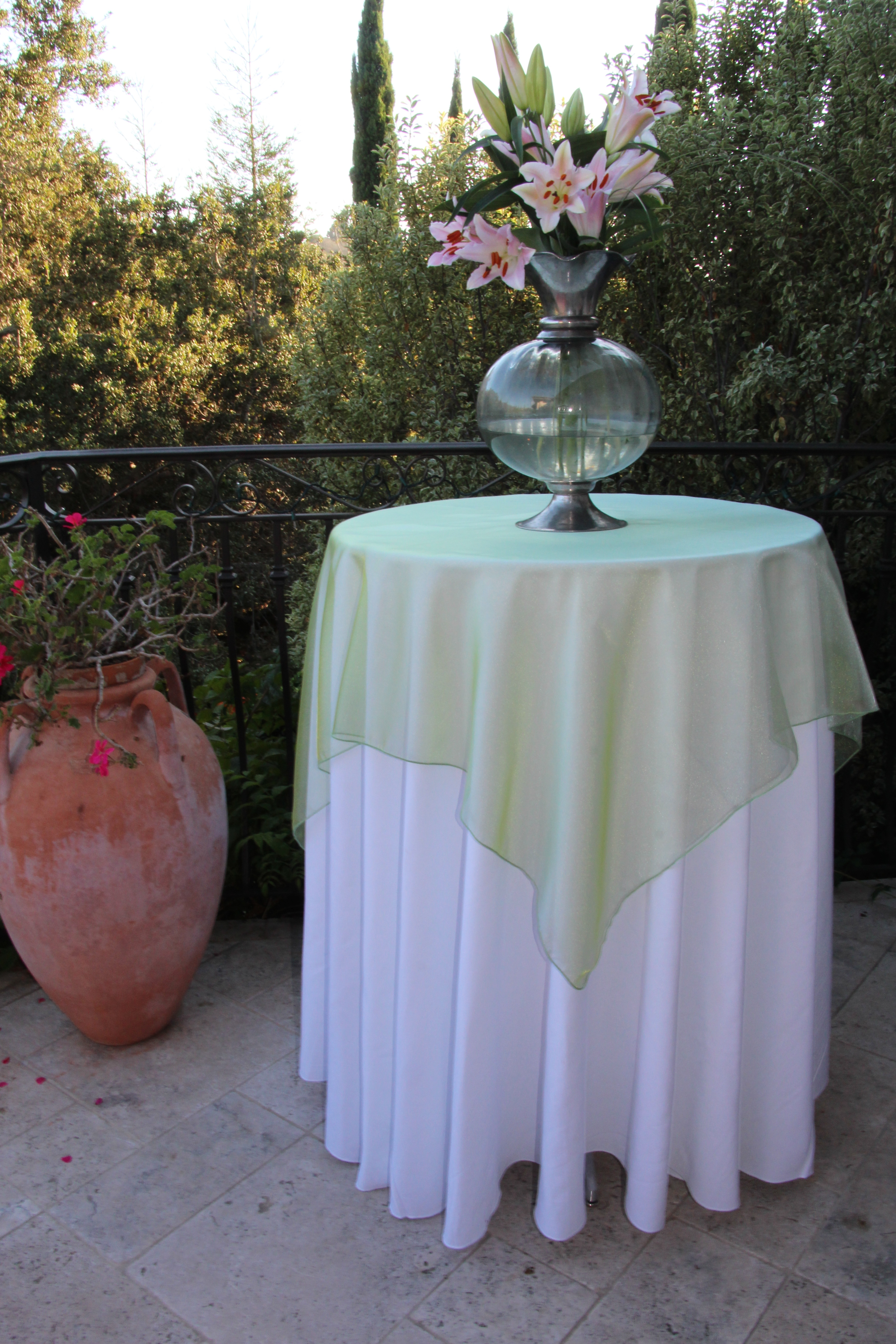 Radiate beauty with shimmering radiance overlays by premier table radiance by premier table linens junglespirit Image collections