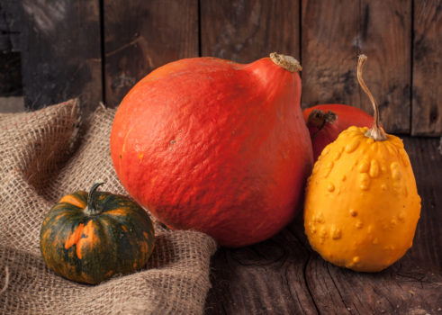 Colorful pumpkins on old wooden table and sackcloth