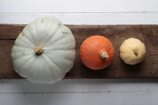 whole pumpkin selection